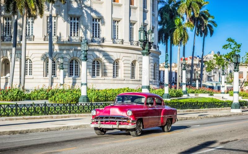 HDR -与美国棕色红色薛佛列葡萄酒汽车驱动的街道生活视图在大街上的Capitolio前在哈瓦那市 免版税图库摄影