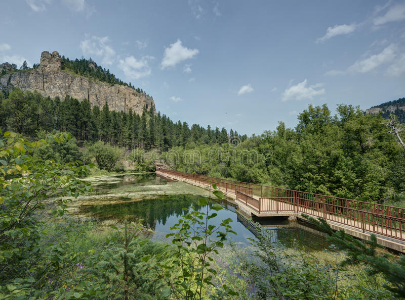 Download HDR of Black Hills stock photo. Image of nature, bushes - 26311412