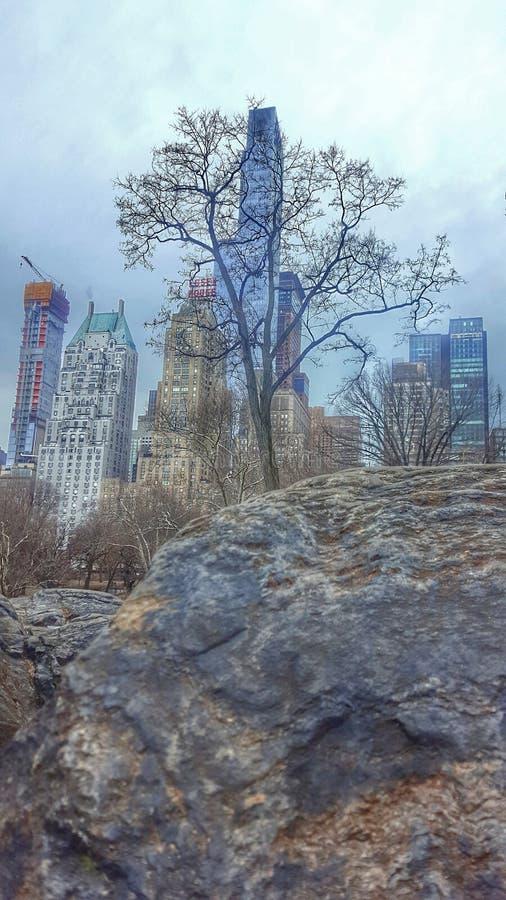 HDR fotografii central park zdjęcia stock