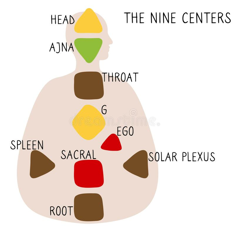 Free Head, Ajna, Throat, Ego, Solar Plexus, Sacral Root Spleen G Center Royalty Free Stock Images - 179717349