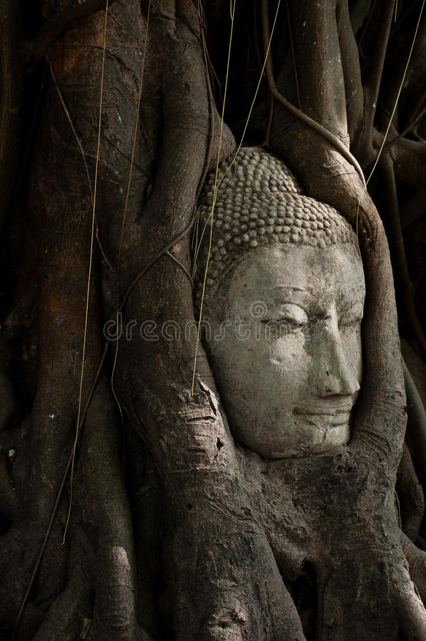 Head Of Buddha Sandstone Royalty Free Stock Photos