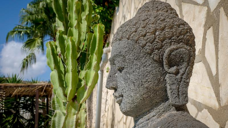 Buddha head in garden stock photo