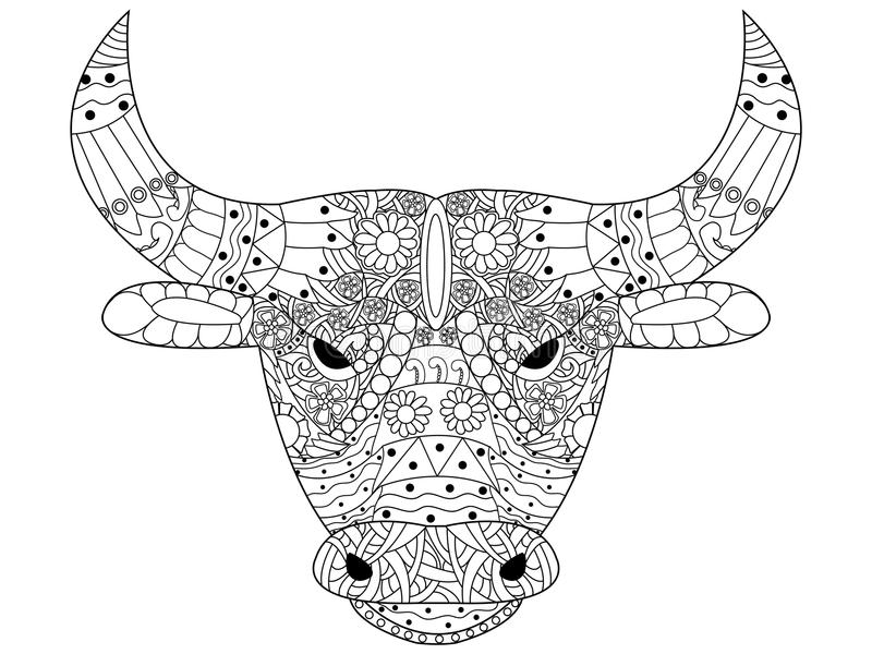Head bull coloring vector for adults. Head bull coloring book for adults vector illustration. Anti-stress coloring for adult. Cow zentangle style. Black and royalty free illustration