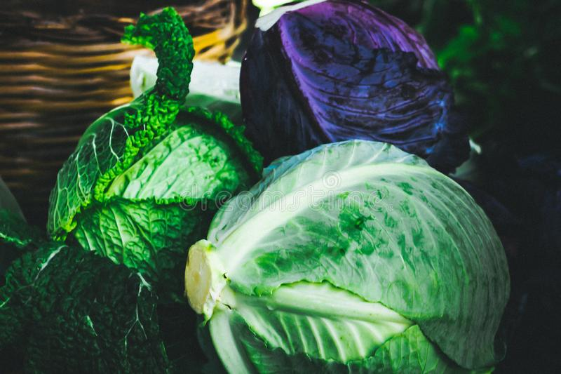 Head of cabbage a food is being produced in a sustainable, environmentally friendly and financially viable way. The family farm started changing in the early stock image
