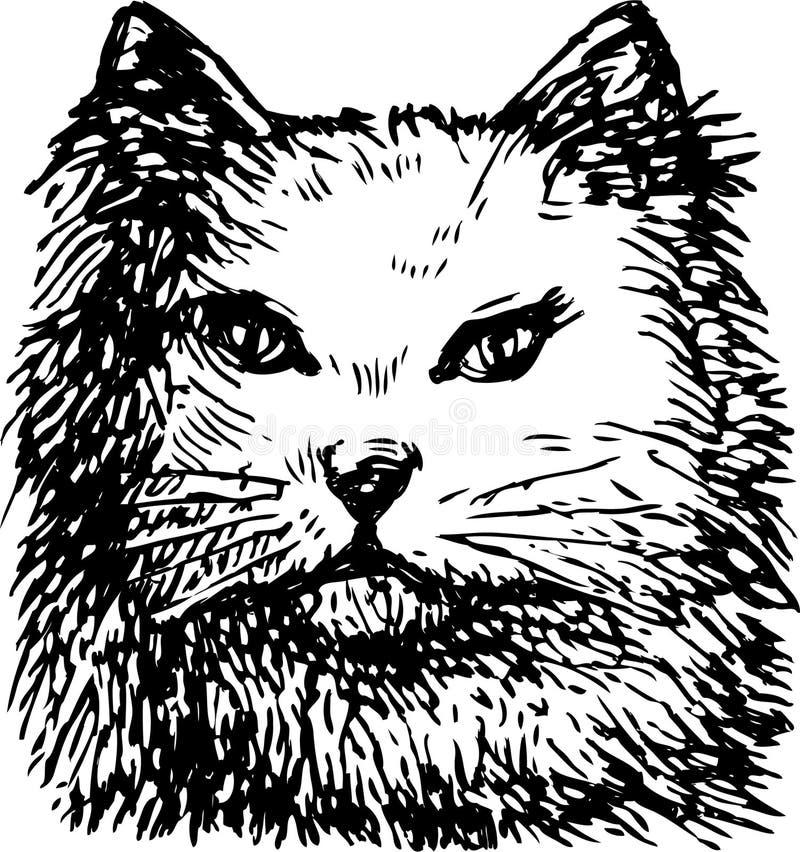 Head Cat Royalty Free Stock Photo