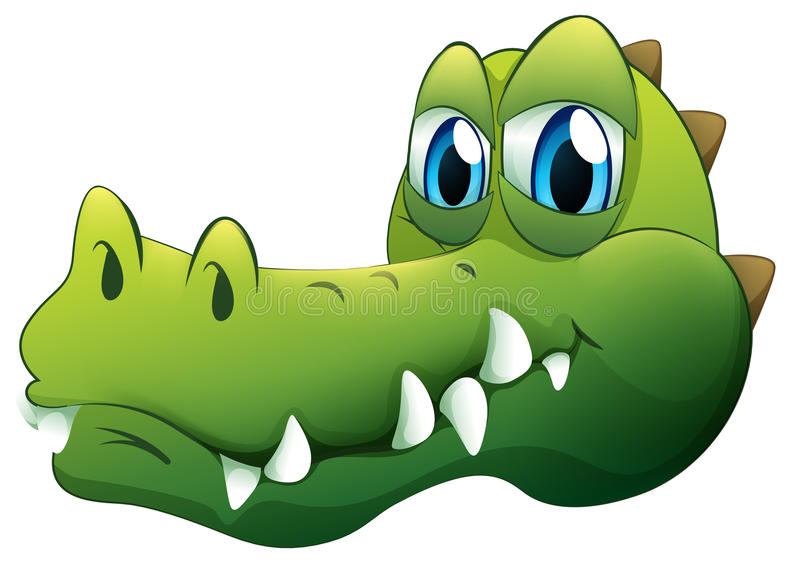 A head of a crocodile. Illustration of a head of a crocodile on a white background stock illustration