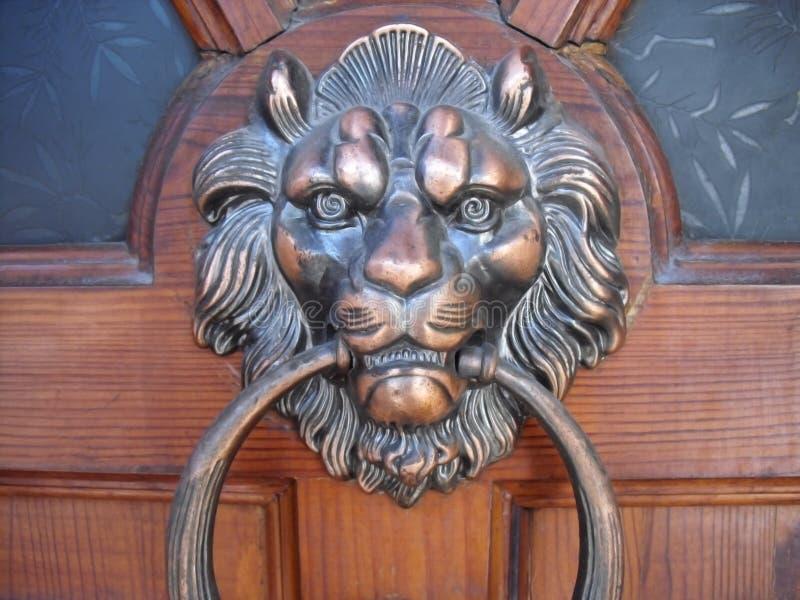 Head dörr för lejon fotografering för bildbyråer