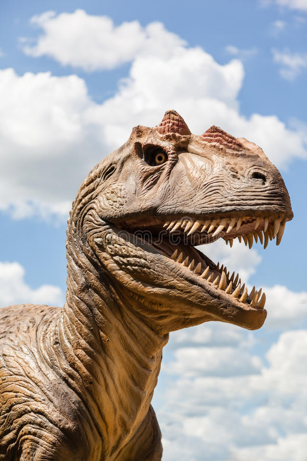 Head of a Dinosaur royalty free stock photos