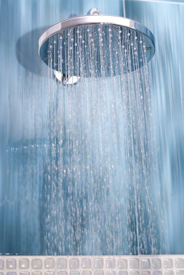 Head dusch royaltyfri foto