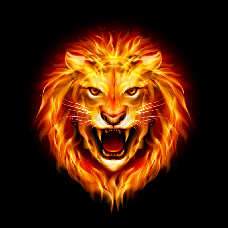 Head of fire lion. stock illustration