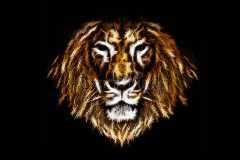 Head of fire lion royalty free stock photo