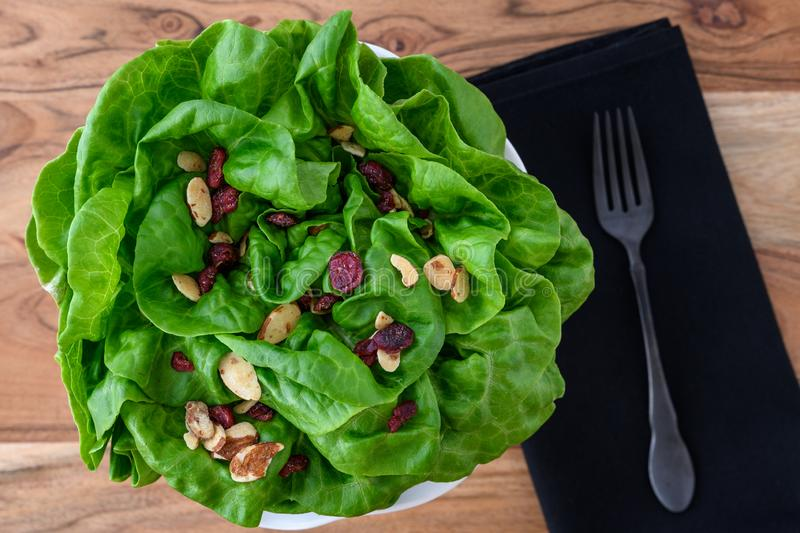 Head of fresh butter lettuce with sliced almond and dried cranberry salad topper, in a white bowl on a wood background, black clot royalty free stock images