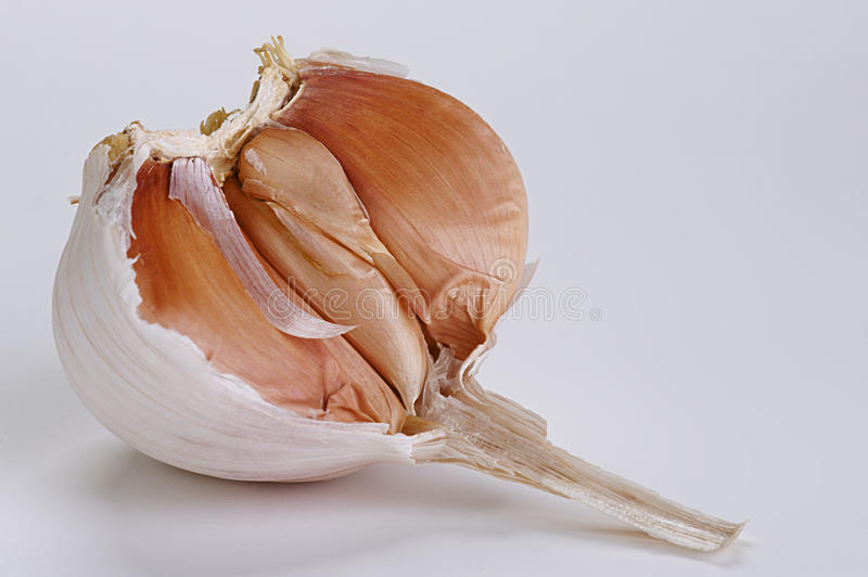 Download Head of garlic stock photo. Image of dish, agriculture - 26743546