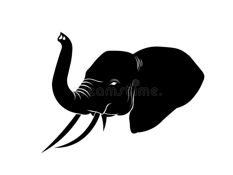 Head illustration för elefant royaltyfria foton