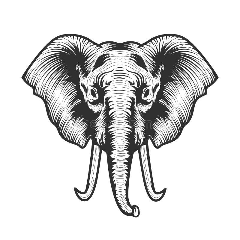 Head illustration för elefant stock illustrationer