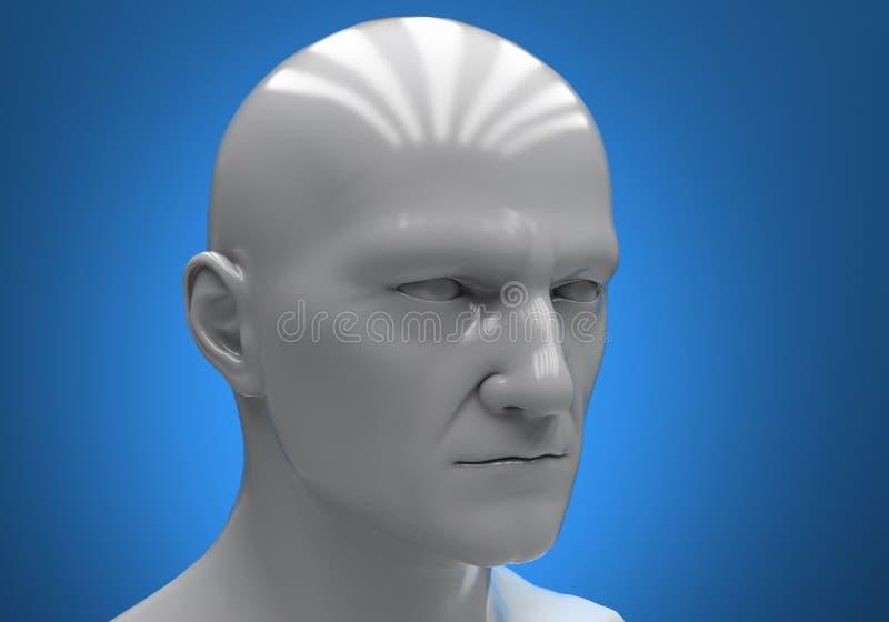head male skyltdocka vektor illustrationer