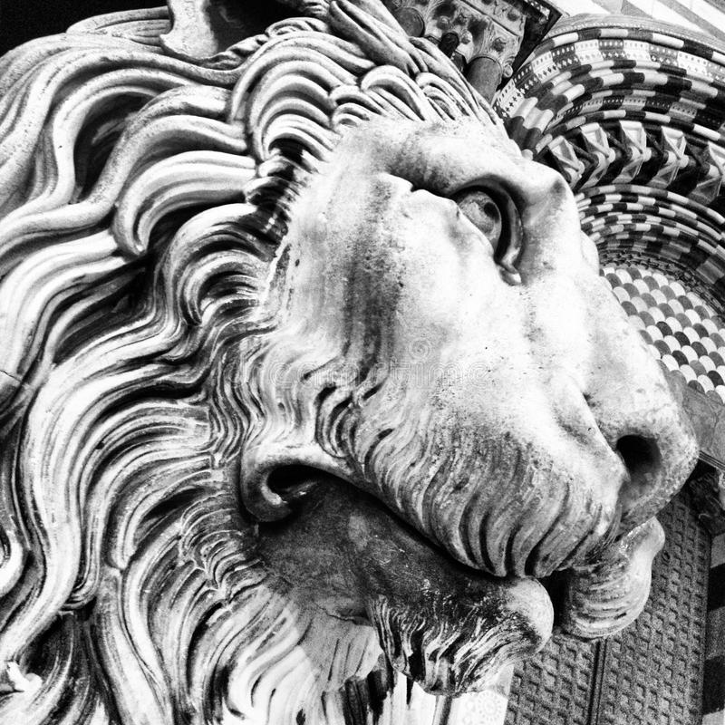 Head of marble lion. Magnificent head of lion old marble royalty free stock image