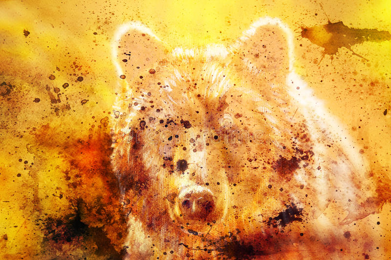 Head of mighty brown bear, oil painting on canvas and graphic collage. Eye contact. vector illustration