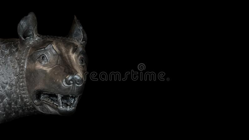 Head of the mother wolf statue from Rome, isolated at background. Head of the mother wolf statue from Rome, isolated at black background, Rome, Italy, closeup royalty free stock images