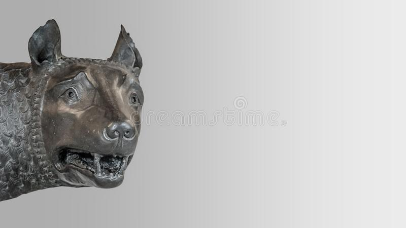 Head of the mother wolf statue from Rome, isolated at background. Head of the mother wolf statue from Rome, isolated at smooth gradient background, Rome, Italy stock images