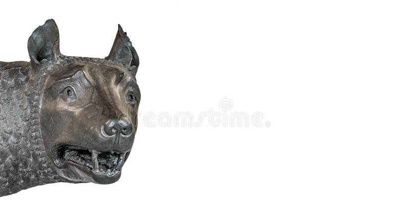 Head of the mother wolf statue from Rome, isolated at background. Head of the mother wolf statue from Rome, isolated at white background, Rome, Italy, closeup stock photography