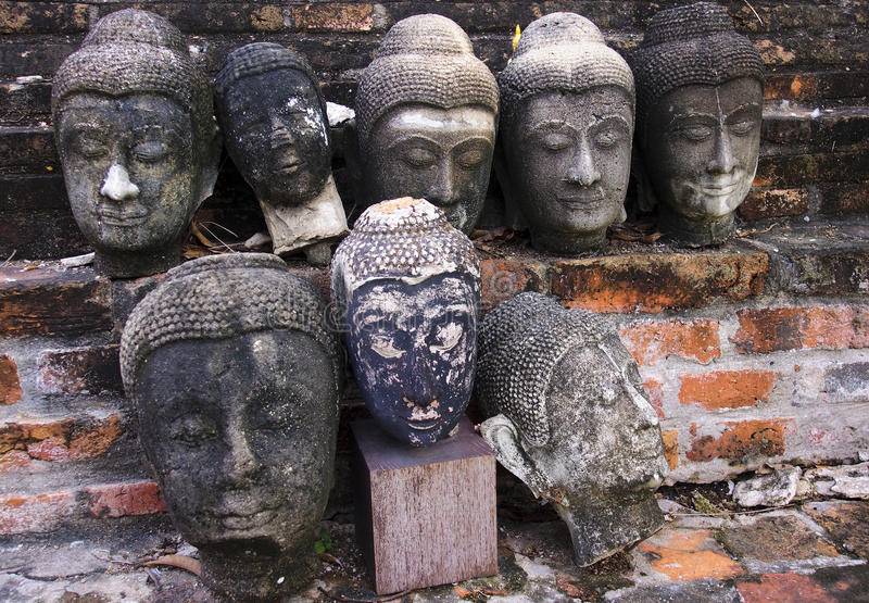Head of old Buddha statues in Ayutthaya royalty free stock images