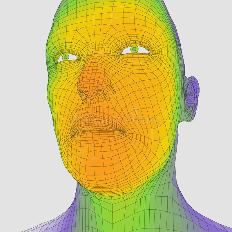 Head of the Person from a 3d Grid. Human Head Wire Model. Human Polygon Head. Face Scanning. View of Human Head. 3D Geometric Face royalty free illustration
