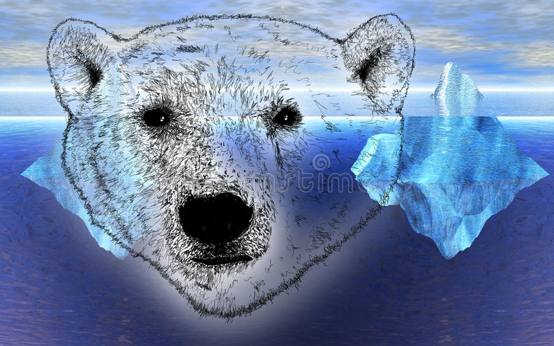 Head Of Polar Bear With Icebergs In Background Stock Photos