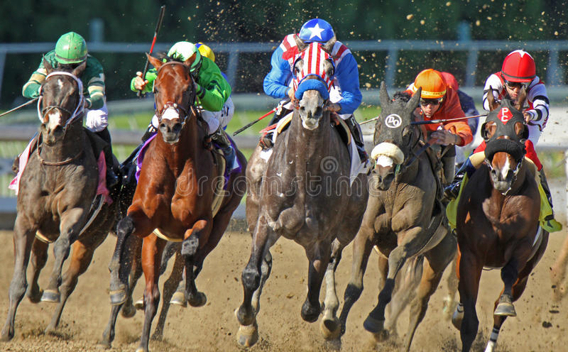 Head On Racing Action. ARCADIA, CA - Two-year-old Uncle Sam (red & white stripes), under Rafael Bejarano, breaks his maiden at Santa Anita Park on Dec 27, 2010 royalty free stock photo