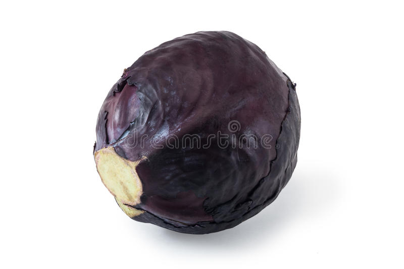 head of red cabbage isolated on white royalty free stock photo
