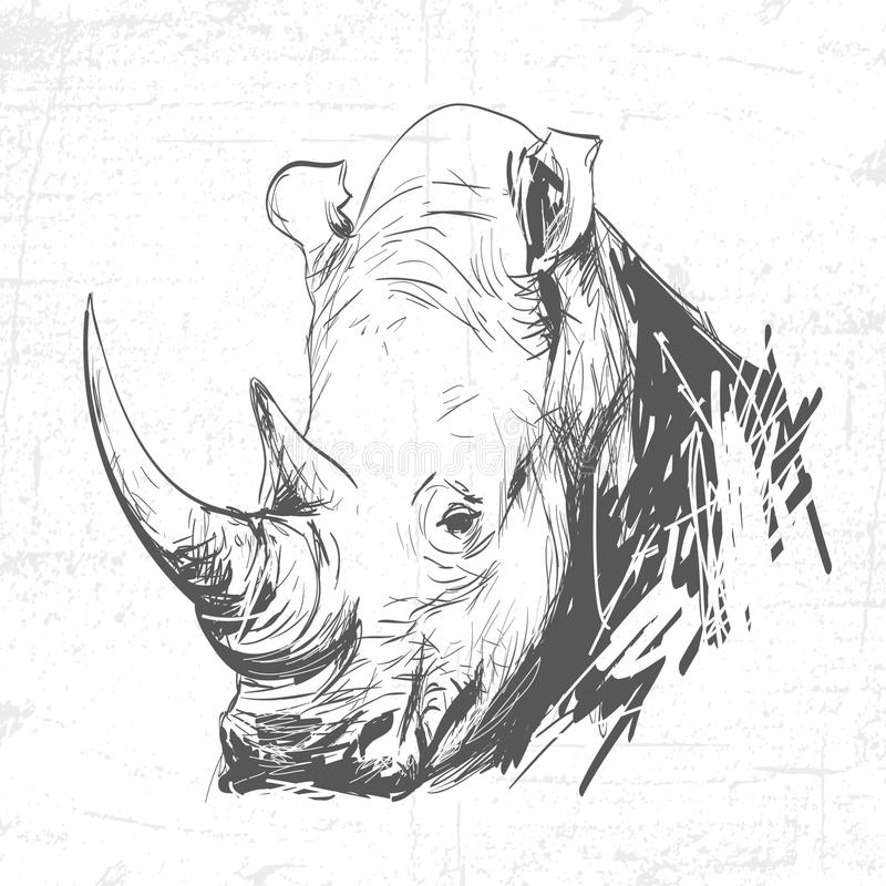 Head rhino in the art of engraving. See also other animals vector illustration