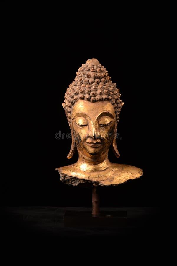 Head scrupture guld- täckande Ayuttaya Art Thailand för Buddha royaltyfri foto