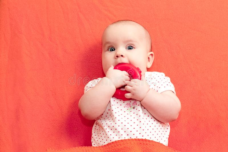 Infant chews teething ring against living coral trendy color background. Head and shoulders portrait of little baby girl chewing teething ring laying on living royalty free stock photography