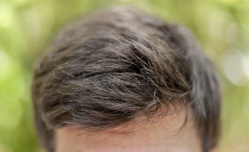 Head skottet av mörkt smutsigt hår för mannen med bokehbakgrund fotografering för bildbyråer
