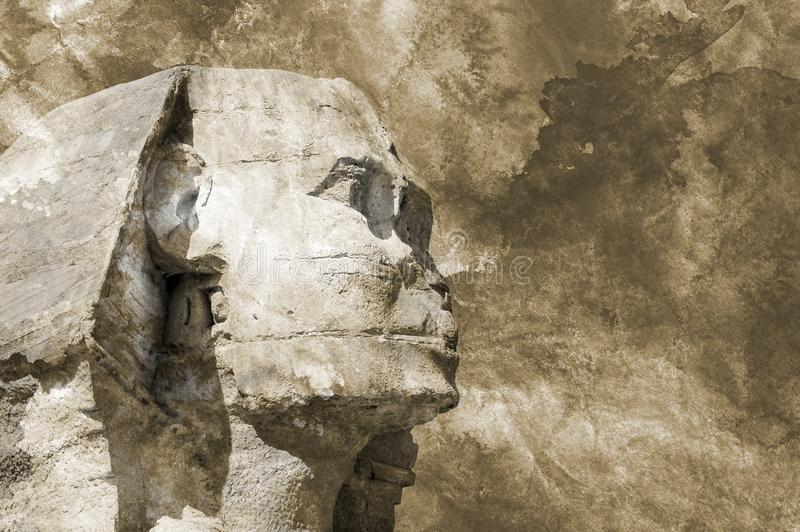 Head Sphinx egyptian aquarelle grunge background stock photography