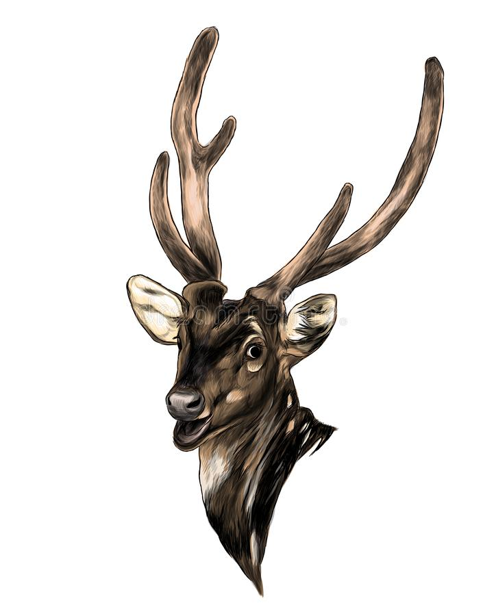 Head of spotted deer with open mouth vector illustration