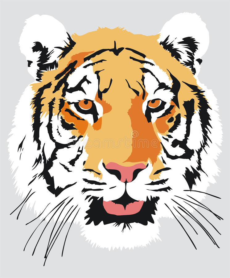 Head of a tiger. File includes eps format