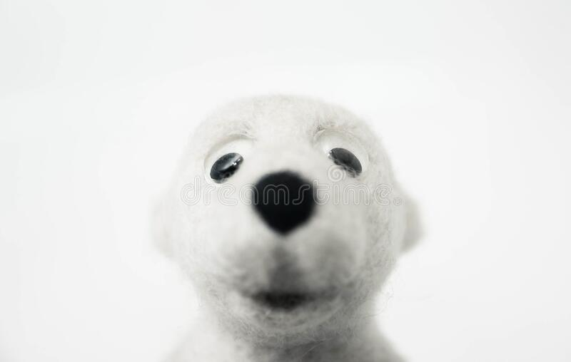 Head of toy polar bear made of felted wool on white background. A head of toy polar bear made of felted wool on white background royalty free stock image