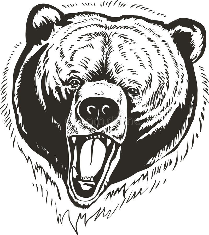 head vektor för björn stock illustrationer