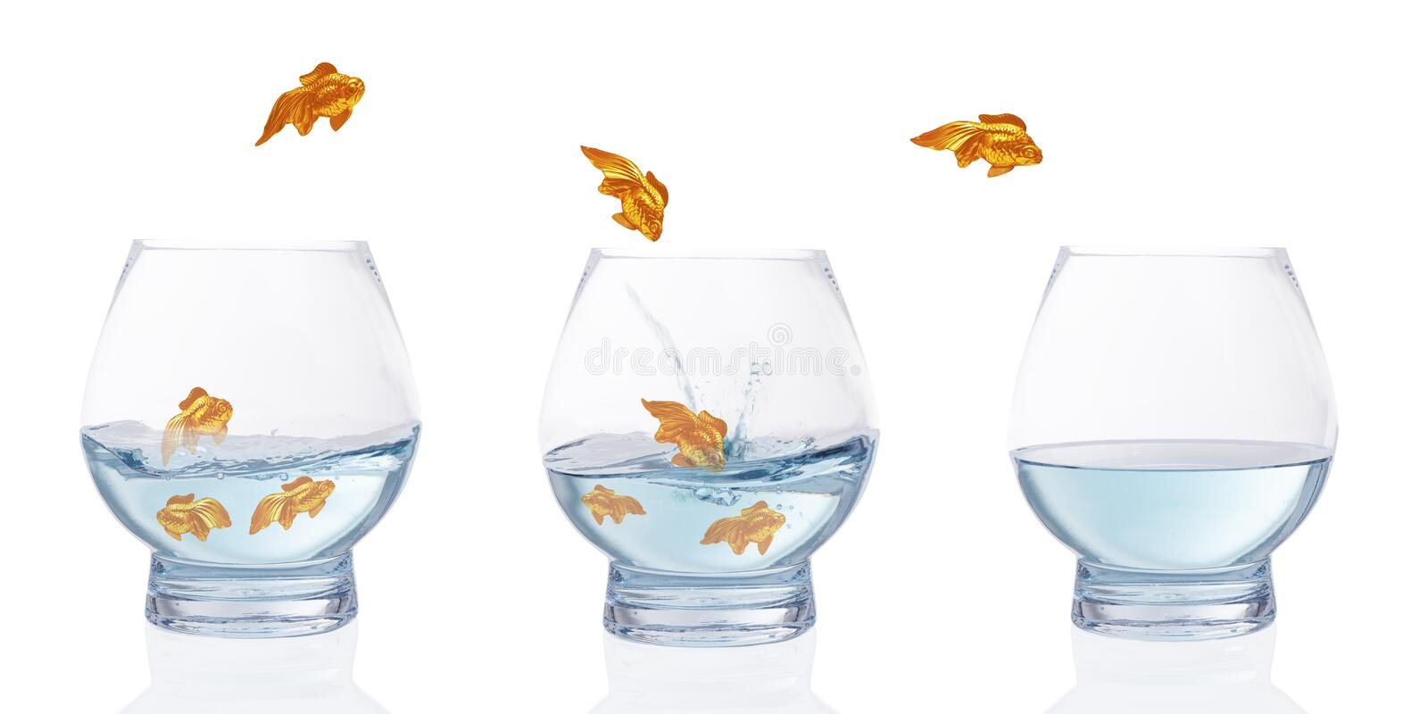 Heading For Calmer Waters. Stylised goldfish leaping from choppy water to calm water stock photo