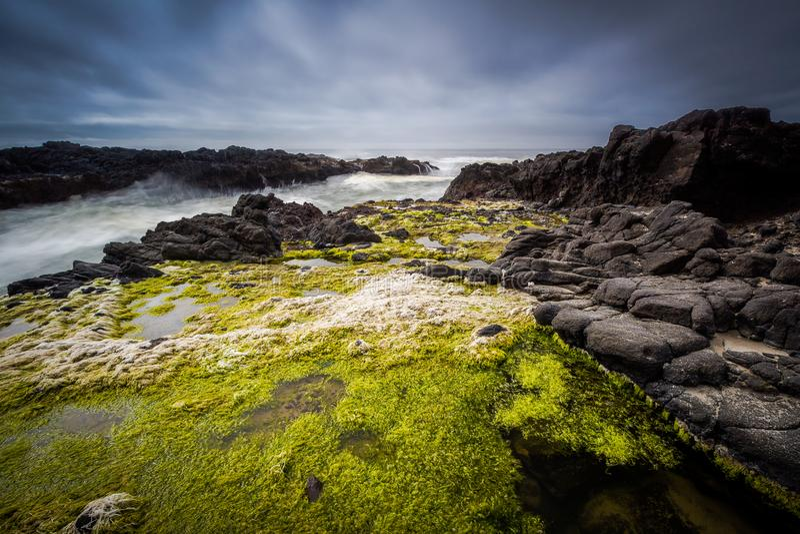 headlands Орегон свободного полета стоковые фотографии rf