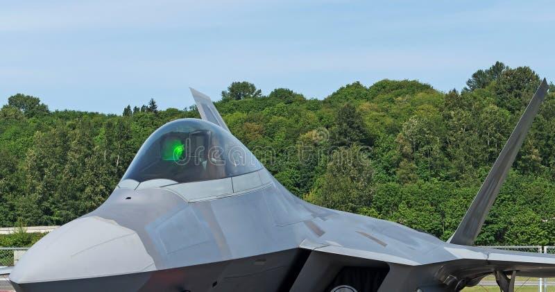 Headon för rovfågel F22 med cockpitcloseupanseende i frodig grön bakgrund royaltyfria foton