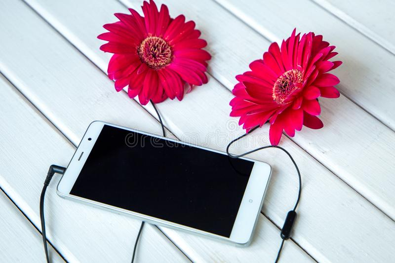 Headphones made frome gerbera flowers and smart phone on wooden table. Top view royalty free stock images