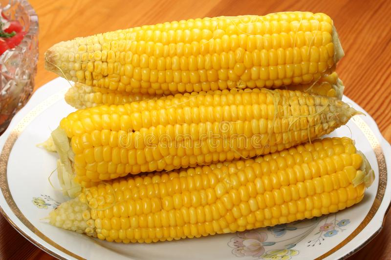 Heads of boiled corn on a plate on a table royalty free stock photo