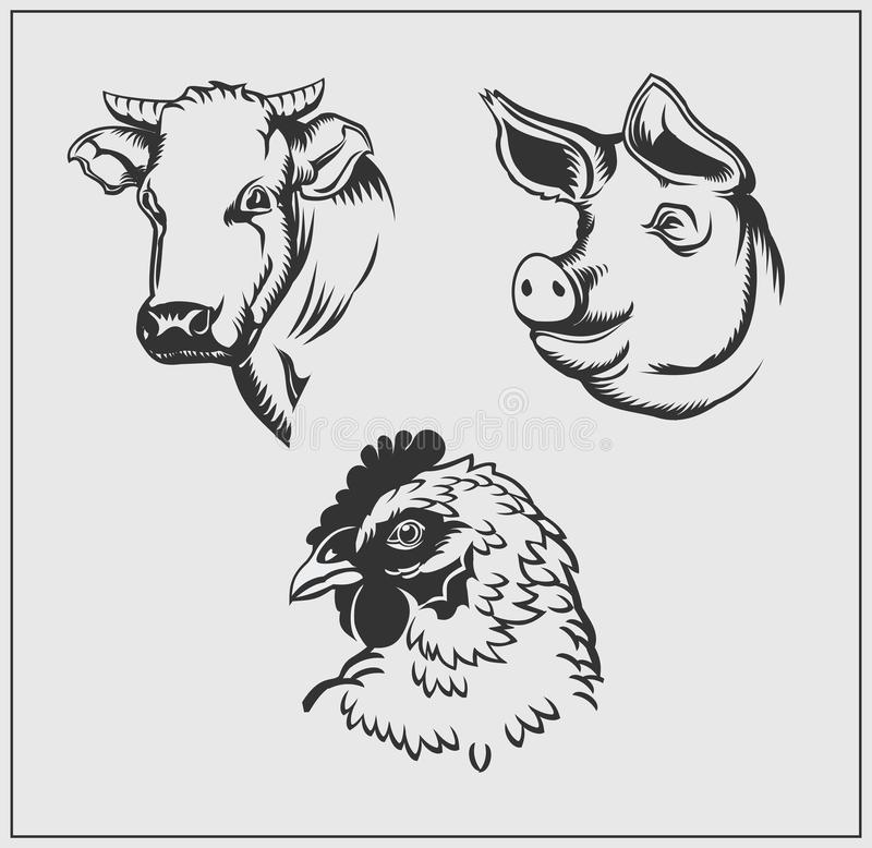 Heads of farm animals. Cow, pig and chicken. stock illustration