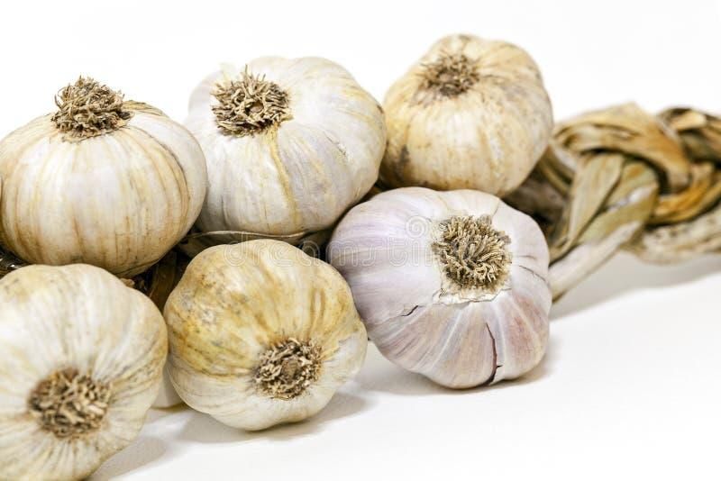 Heads garlic stock image