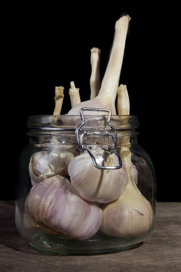 Heads of garlic. In a glass jar royalty free stock photos