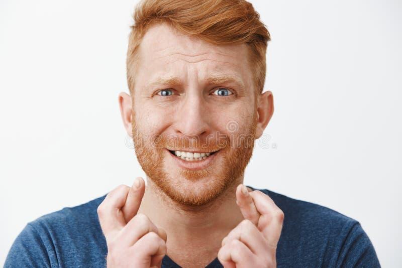 Headshot nerwowa panikuje atrakcyjna samiec z imbirowym włosy i szczecina, marszczący brwi zaciskający zęby i krzyżować zdjęcia royalty free