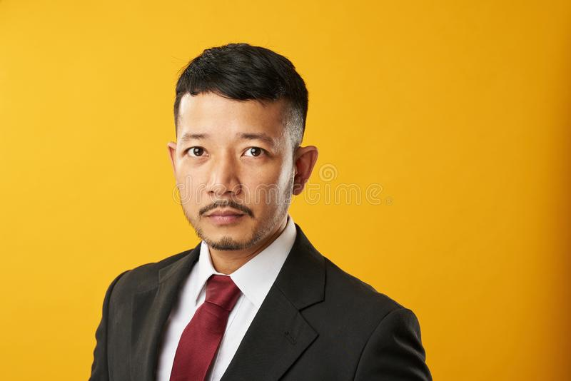 Headshot van de professionele Aziatische mens royalty-vrije stock afbeeldingen