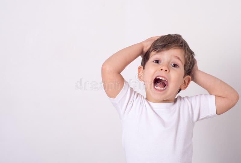 Headshot van geïmponeerde aantrekkelijk weinig jongen het openen mond van verbazing en schokholdingshanden dichtbij gezicht stock foto